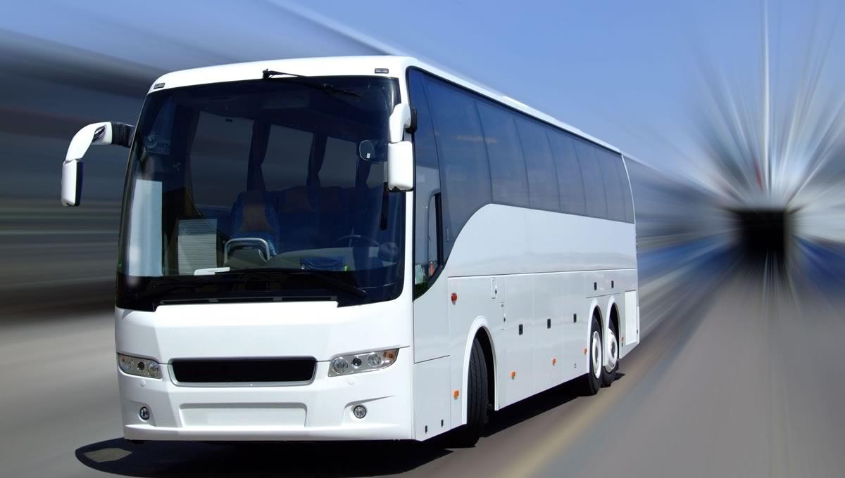 Arrivals Departures Elite Destination Management Florida